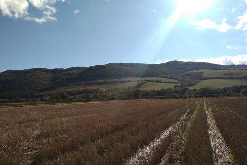 pozemok-cervenica-pri-sabinove